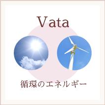 アーユルヴェーダ vata